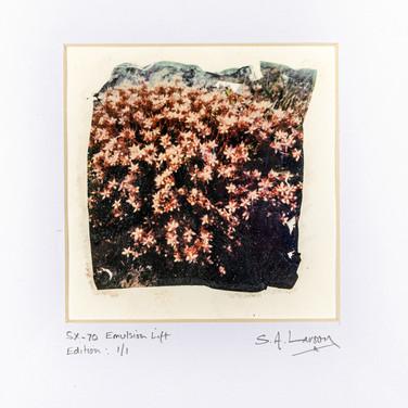 Simon Larson: Untitled- edition 1/1