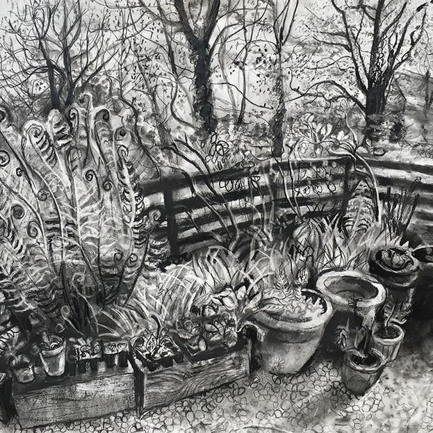 The Front Garden - Sarah Longley