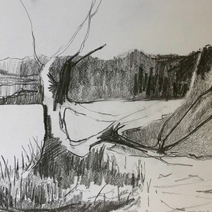 Tree Next To The River - Tatjana Fraser