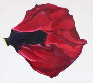 The Wingless Bird - Meg Miller