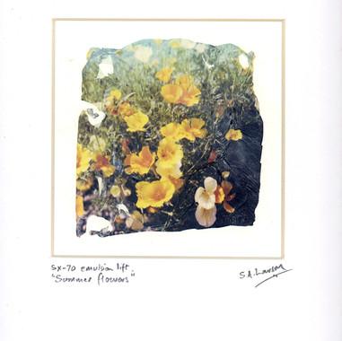 Summer Flowers, Simon Larson