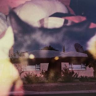 Cat House - Tatjana Fraser