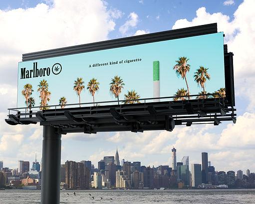 billboard_Trees.jpg
