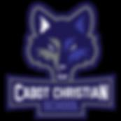 CCSCoyote-Primary-CMYKblueoutline_edited
