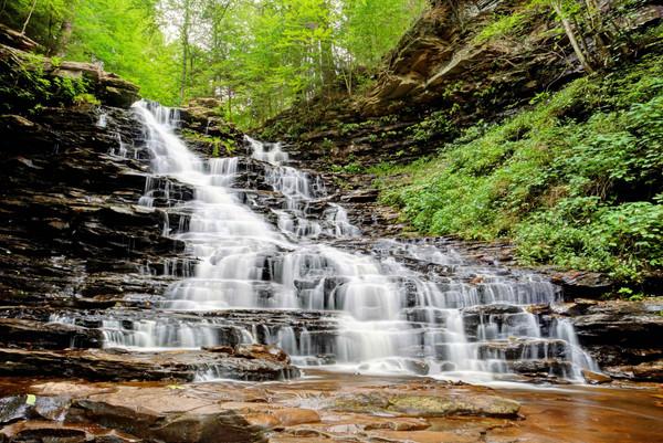 F.L. Rickets Falls
