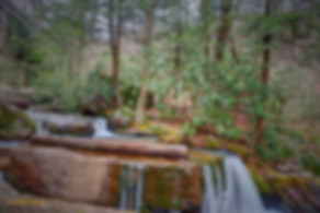 Table Falls Quehanna Wild Area