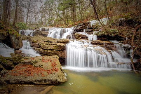 Forestville Falls