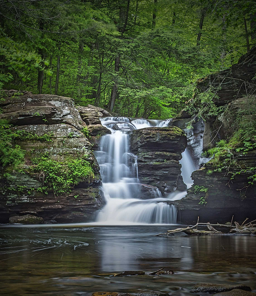 Murray Reynolds Falls Ricketts Glen Pennsylvania