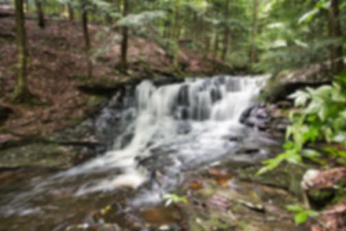 Rusty Falls