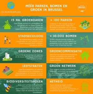 10-puntenplan voor meer groen in Brussel