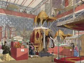 빅토리아 시대 박제술이 만들어낸 흥미로운 생물들