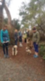 pack walk-2.jpg