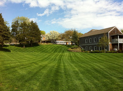 The SFAH Main Lawn & Activities Building