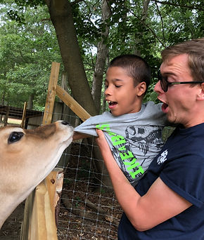 Smiling boy is held while playing with a cow at a farm at special needs camp