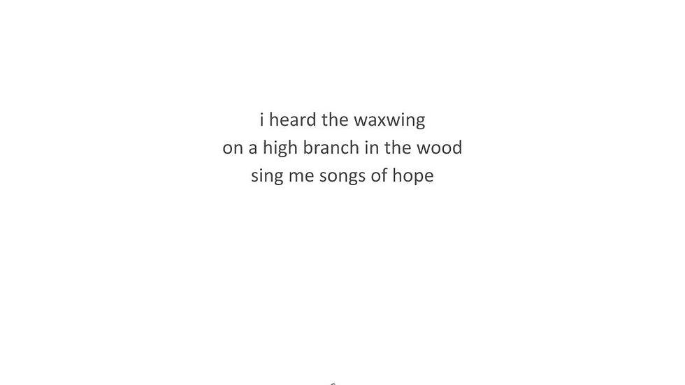 HAIKU | #PoesyTuesday Jan 12, 2021 | PRINT