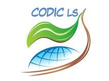 LOGO CODIC LS.jpg
