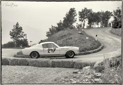 Peter Schetty auf Ford Shelby GT
