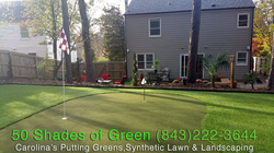 Synthetic Lawn & Putting Green