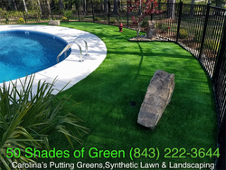 Swimming Pool Turf & Landscape