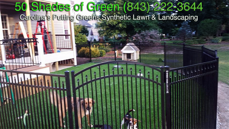 Residential Pet Yard