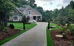 Synthetic Lawn, Landscaping
