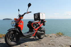 Scottys Scooters next to the ocean