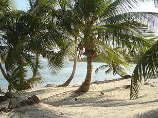 Costa Maya, Costa Maya Real Estate, Cozumel Island, Mahahual Real Estate, Yucatan real Estate, Yucatan Beachfront Lots, Sisal Yucatan