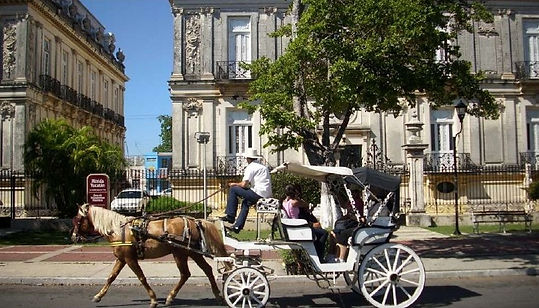 Horse buggy ride in Merida