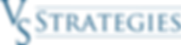 VSS Logo - Blue.png
