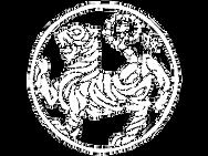 Basingstoke Childrens Martial Arts