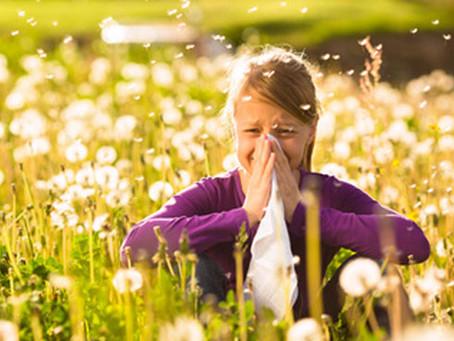 Les allergies :quelles sont les solutions pour améliorer son Terrain allergique?