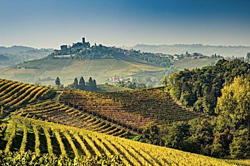 Piemonte vino.png