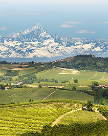 langhe wijngebied.png