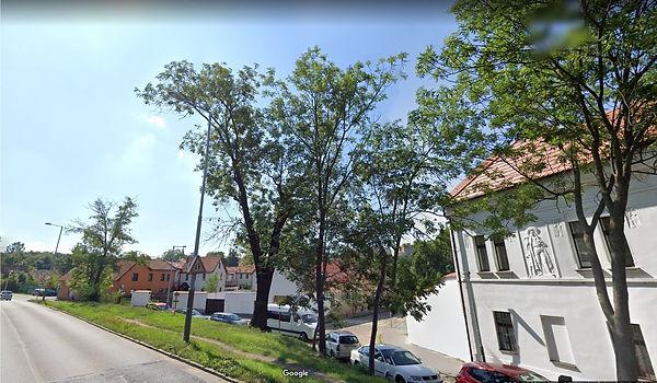 kaceni2.jpg