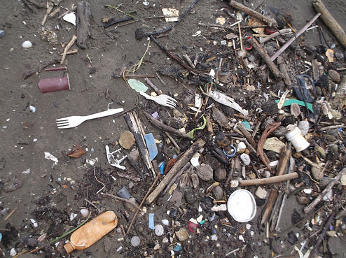Odpad_na_břehu_Karibiku,_Guatemala_2017.