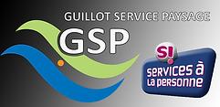 GSP.png