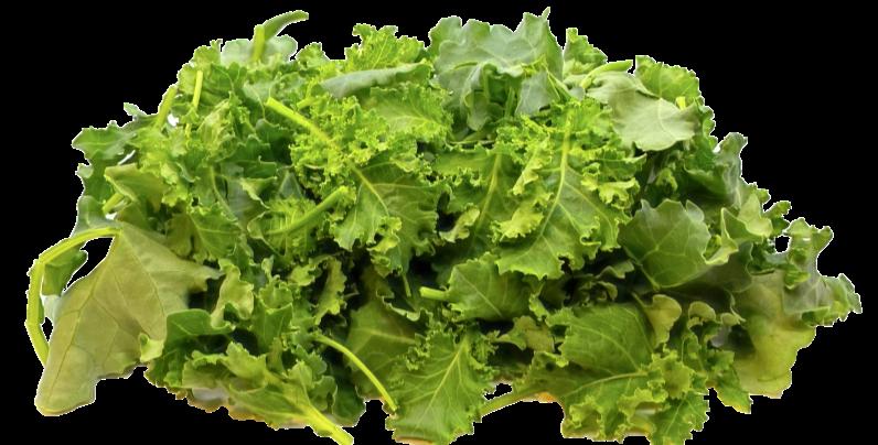 Revolution Farms OP Lettuce 3 lb bag