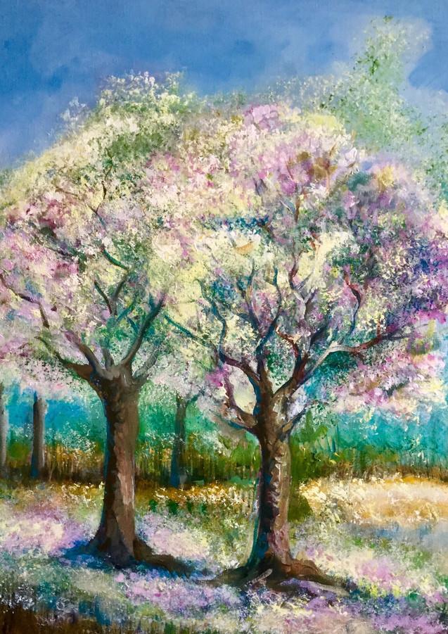 Bloeiende prunussen