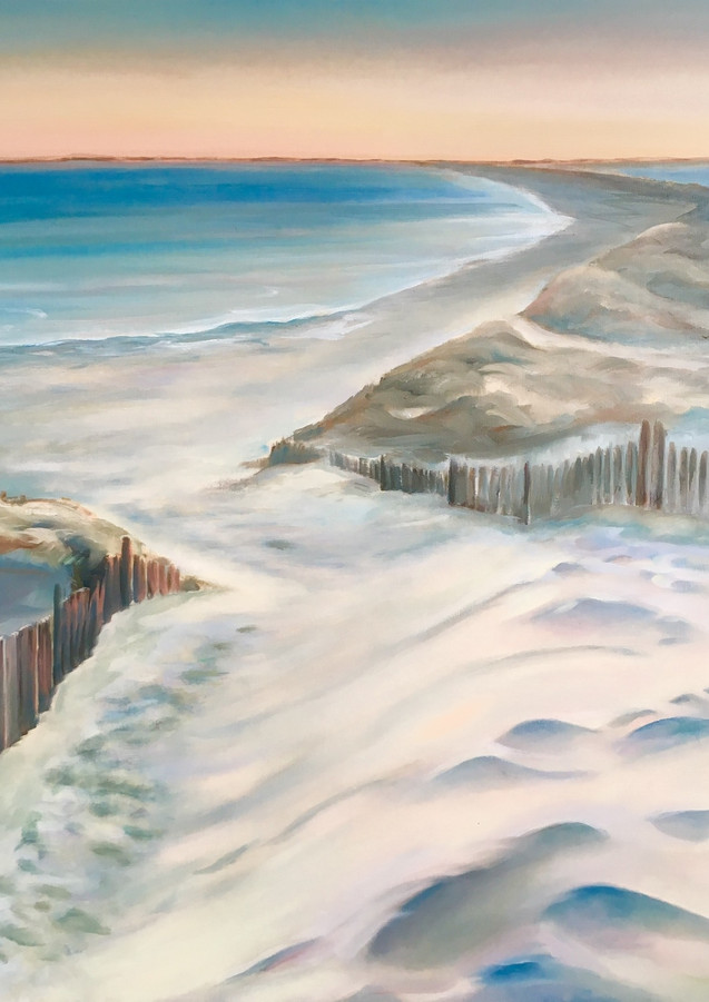 Strand zicht Zoutelande