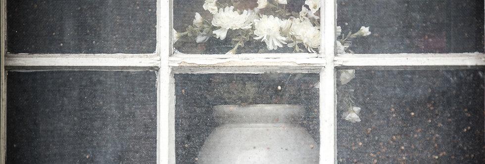 Pennsylvania farm window 20 x 30 print