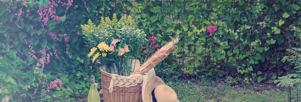 Summer Picnic-2  16 x 20