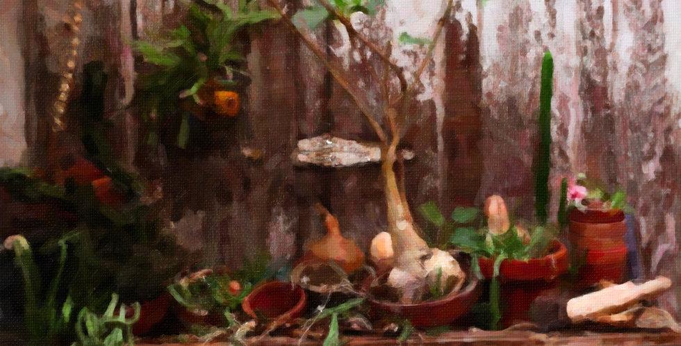 Still life garden Digital oil on canvas 16 x 16