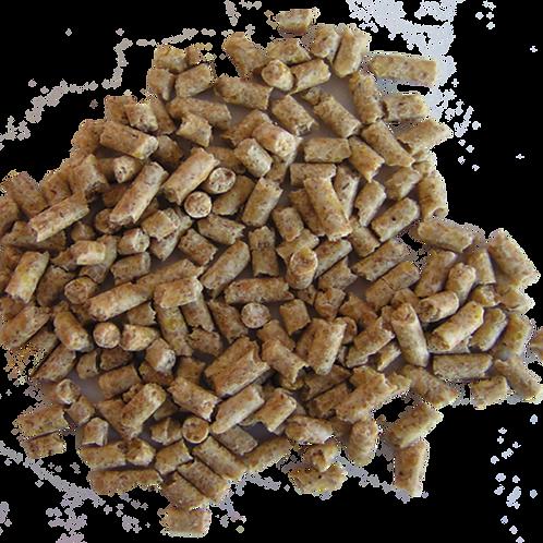 Sukces źrebaki odsadki granulat