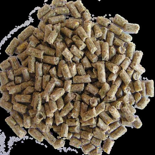 Sukces źrebaki starter granulat