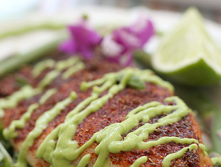 Blackened Rockfish with Avocado Sauce