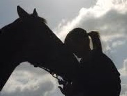 horse connection.jpg 2014-7-24-23:46:27