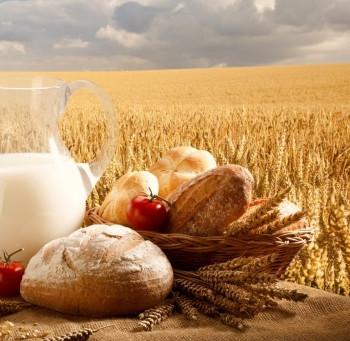 День работников сельского хозяйства и агропромышленного комплекса