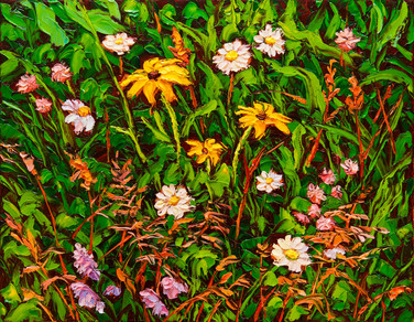 Wildflower Medley (oil, 11x14 in, Sold)