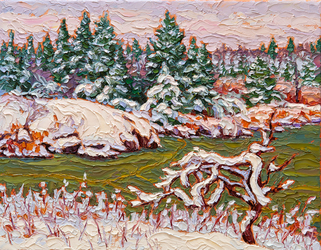 Early Snow, Whiteshell (oil, 11x14 in, Sold)