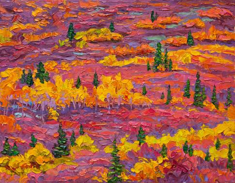 Patterned Hillside, Yukon (11x14 in, Sold)